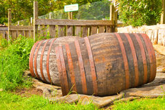 Wooden barrels Stock Images