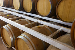 Wooden barrels at contemporary wine actory Stock Images