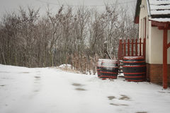 Wooden barrels covered with snow Royalty Free Stock Photos