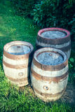 Wooden barrels in a meadow Stock Photography