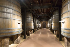 Wooden barrels in old cellar. Rows of vertical large wooden barrels in old cellar Royalty Free Stock Photography