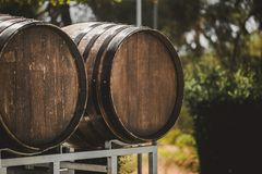 Wooden barrels with red and wihte wine for tasting on the vineyard. Copy space for text and design Royalty Free Stock Image