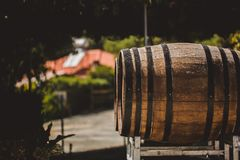 Wooden barrels with red and wihte wine for tasting on the vineyard. Copy space for text and design Stock Images
