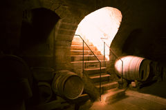 Wooden barrels in a wine cellar Stock Photo