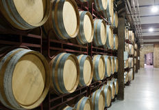 Wooden barrels in  winery Stock Image
