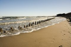 Wooden barriers on beach Stock Image