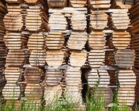Wooden bars Royalty Free Stock Image
