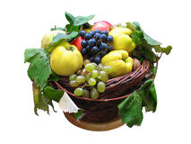 Wooden basket with autumn harvest fruit isolated Royalty Free Stock Images