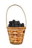 Wooden basket with blackberries Stock Images