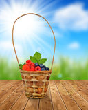 Wooden basket with fruits Royalty Free Stock Images