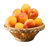 Wooden basket full of apricots Royalty Free Stock Photography