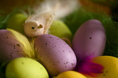 Wooden basket full of colorful eggs and bird Stock Photography