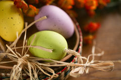 Wooden basket full of colorful eggs and bird Royalty Free Stock Image