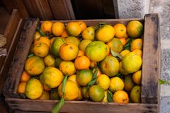 Wooden basket of greenish mandarin oranges tangerins with green leaves. For sale Royalty Free Stock Photography