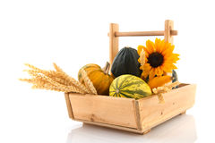 Wooden basket ornamental gourds and grain Stock Images