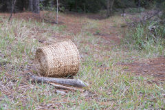 Wooden basket on the path in green forest background royalty free stock photography