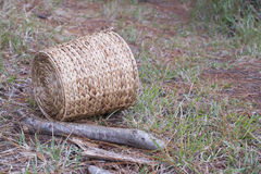Wooden basket on the path in green forest background royalty free stock photos