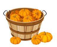 Wooden basket with pumpkins. Vector illustration. Royalty Free Stock Photos