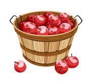 Wooden basket with red apples. Stock Photos