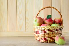 Wooden basket with red and green apples on front of brown wooden wall. Harvest concept.  royalty free stock image