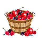 Wooden basket with various berries. Vector illustration. Stock Photo