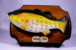 Wooden Bass Fish Trophy Royalty Free Stock Photos