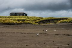 A Wooden Beach House Sit On A Small Hill On A Green Grassy Field In A Stormy Autumn Evening In Long Beach Washington. A Wooden House Sit On A Small Hill On A Royalty Free Stock Photo