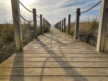 Free Wooden Beach Path With Rope Fence And Blue Sky, Leading To Ocean. Low Angle. Stock Photo - 174690490