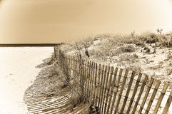 Beach storm fence Stock Photography