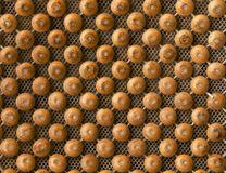 Wooden beads. In a plastic mesh royalty free stock photos