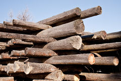 Wooden beams stored in the stack Stock Images