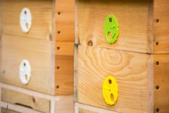 Wooden bee hives. Hives with bees stock images