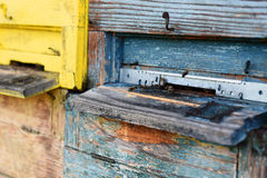 Wooden beehive closeup. Painted colorful wooden beehive, , closeup Royalty Free Stock Image
