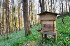 Wooden Beehive Royalty Free Stock Photo