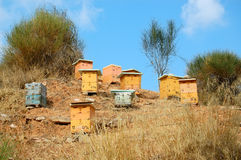 Wooden beehives stock photos