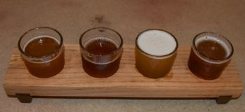 Wooden beer sampling tray with four brews. Wooden beer sampling tray with four different brews already being sampled stock photos
