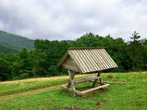 Wooden bench. In a forest glade Stock Photo