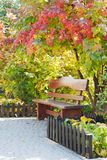Wooden bench. Wooden brown bench under the bush of viburnum Stock Image