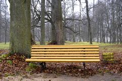 Wooden bench Royalty Free Stock Photography