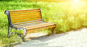 Wooden bench in an alley in the park. Green grass. Bright sunlight and glare. A place to relax. Photo with place for text. Summer Royalty Free Stock Image