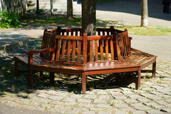Wooden bench around a tree Royalty Free Stock Photos