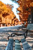 Wooden bench in autumn alley stock photos