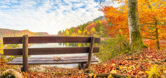 Wooden bench in an autumn landscape Royalty Free Stock Photos