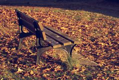 Wooden bench in autumn park Stock Photography