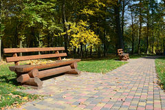 Wooden bench in autumn park Stock Photo