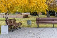 Wooden bench in autumn park Stock Photos