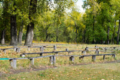 Wooden bench in autumn Park in September Stock Image