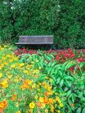 Wooden bench in blooming summer garden Stock Photography