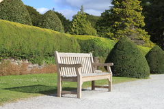 Wooden bench. A wooden bench in a botanical park Stock Photography