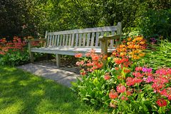 Wooden bench and bright blooming flowers Royalty Free Stock Photography